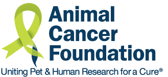 Animal Cancer Foundation Year in Review 2020